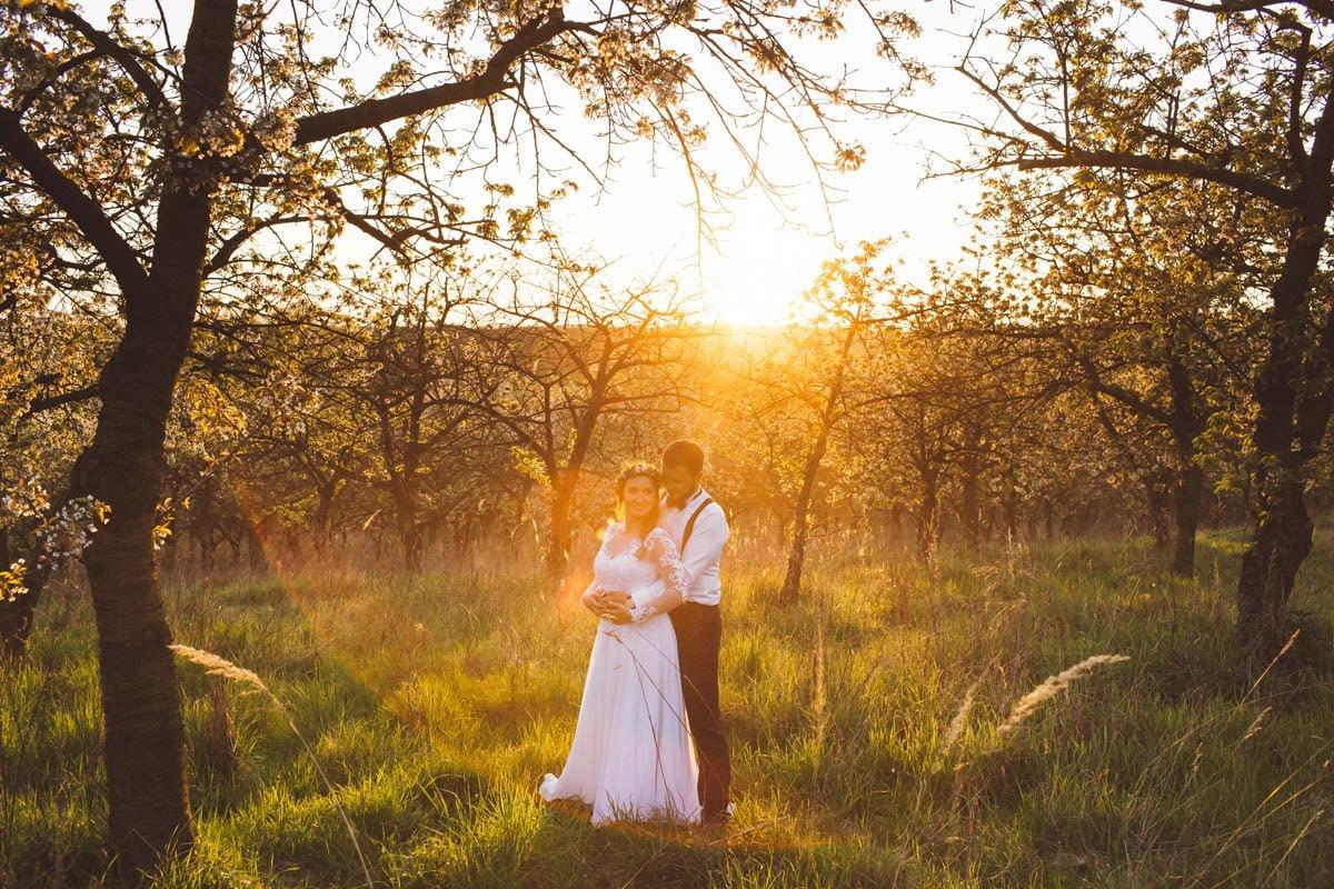 sesja ślubna na łonie naturyy